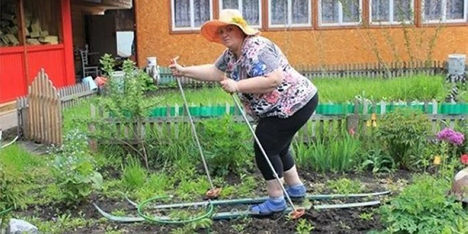 Анекдоты от дачников от 23 июля 2017 Юмор Шутки Сад Приколы Огород Дачник Дача Анекдоты