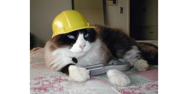 Новые смешные анекдоты от строителей от 8 мая 2017 Юмор Шутки Стройка Строитель Ремонтник Ремонт Приколы Анекдоты