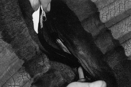 Ремонт боковины радиальных покрышек внедорожной и землеройной техники радиальными пластырями РМ12 Tech Публикации о шиноремонте  Шлифовальные шарики Шиноремонтный инструмент Шиноремонтные материалы Шиномонтажник Шиномонтаж Шероховальные машинки Технология ремонта Тальк шиномонтажный Сырая резина Ролики закаточные Публикации Пластыри кордовые Очиститель Ножи для шиномонтажа Мел для шиномонтажа Клей Вулканизационная жидкость Вулканизатор Восстановитель бескамерного слоя Tech   Ремонт боковины радиальных покрышек внедорожной и землеройной техники радиальными пластырями РМ12 Tech Публикации о шиноремонте  Шлифовальные шарики Шиноремонтный инструмент Шиноремонтные материалы Шиномонтажник Шиномонтаж Шероховальные машинки Технология ремонта Тальк шиномонтажный Сырая резина Ролики закаточные Публикации Пластыри кордовые Очиститель Ножи для шиномонтажа Мел для шиномонтажа Клей Вулканизационная жидкость Вулканизатор Восстановитель бескамерного слоя Tech   Ремонт боковины радиальных покрышек внедорожной и землеройной техники радиальными пластырями РМ12 Tech Публикации о шиноремонте  Шлифовальные шарики Шиноремонтный инструмент Шиноремонтные материалы Шиномонтажник Шиномонтаж Шероховальные машинки Технология ремонта Тальк шиномонтажный Сырая резина Ролики закаточные Публикации Пластыри кордовые Очиститель Ножи для шиномонтажа Мел для шиномонтажа Клей Вулканизационная жидкость Вулканизатор Восстановитель бескамерного слоя Tech   Ремонт боковины радиальных покрышек внедорожной и землеройной техники радиальными пластырями РМ12 Tech Публикации о шиноремонте  Шлифовальные шарики Шиноремонтный инструмент Шиноремонтные материалы Шиномонтажник Шиномонтаж Шероховальные машинки Технология ремонта Тальк шиномонтажный Сырая резина Ролики закаточные Публикации Пластыри кордовые Очиститель Ножи для шиномонтажа Мел для шиномонтажа Клей Вулканизационная жидкость Вулканизатор Восстановитель бескамерного слоя Tech   Ремонт боковины радиальных покрышек внедорожной и землеройной техники радиальным