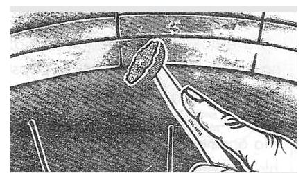 Ремонт диагональных шин Ferdus Шлифовальные шарики Шиноремонтный инструмент Шиноремонтные материалы Шиномонтажник Шиномонтаж Шероховальные машинки Технология ремонта Тальк шиномонтажный Сырая резина Ролики закаточные Публикации Пластыри кордовые Очиститель Ножи для шиномонтажа Мел для шиномонтажа Клей Вулканизационная жидкость Вулканизатор Восстановитель бескамерного слоя Ferdus   Ремонт диагональных шин Ferdus Шлифовальные шарики Шиноремонтный инструмент Шиноремонтные материалы Шиномонтажник Шиномонтаж Шероховальные машинки Технология ремонта Тальк шиномонтажный Сырая резина Ролики закаточные Публикации Пластыри кордовые Очиститель Ножи для шиномонтажа Мел для шиномонтажа Клей Вулканизационная жидкость Вулканизатор Восстановитель бескамерного слоя Ferdus
