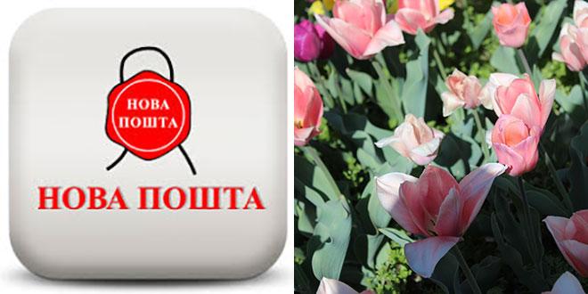 Новая почта. График работы в майские праздники. Шиномонтажник Шиномонтаж Новости доставки Новости