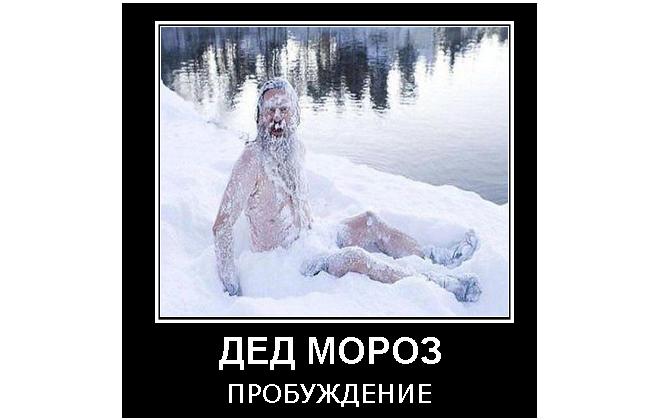 Дед Мороз пробуждение Демотиваторы Дед Мороз Дачник